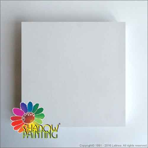 SP0423 Canvas 3D 30*30cm