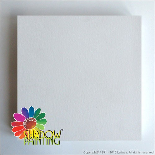 SP0425 Canvas 3D 50*50cm