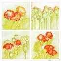 BSP0465 Bundleset for canvas:  Poppies